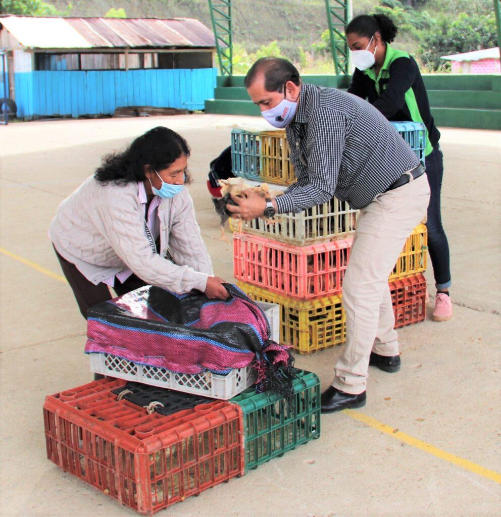 Alcalde-entrega-aves-de-corral-a-agricultores